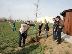 U Osijeku partneri posadili drveće kao simbol prikupljanja PET ambalaže