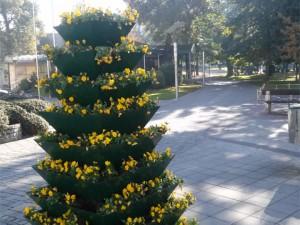 Jesen u našem Gradu